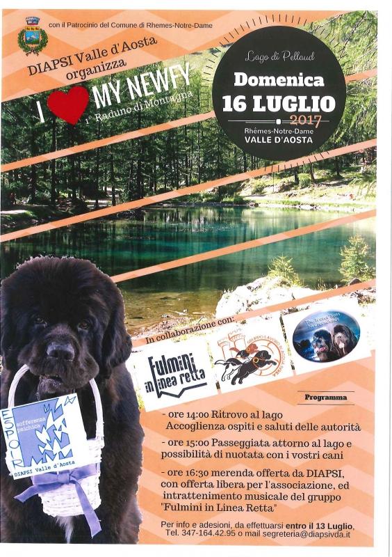 I love my newfy - 1°raduno di montagna DIAPSI